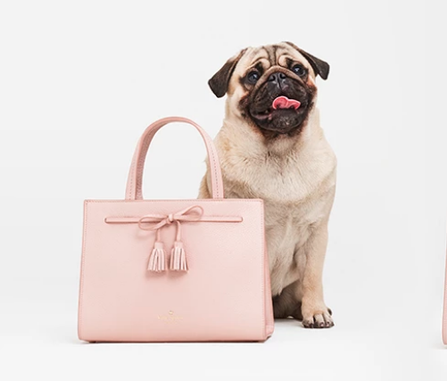 Kate Spade, Sam Collection, Pug